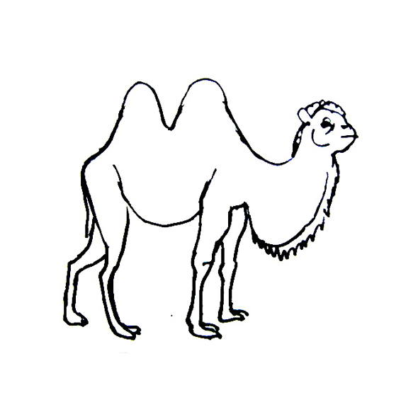 Camel Coloring Pictures