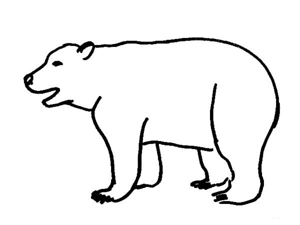 coloring page of a polar bear - bear coloring pages