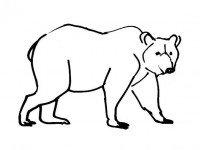 Free realist brown bear coloring pages ~ Bear coloring pages