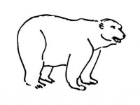Standing Polar bear coloring page