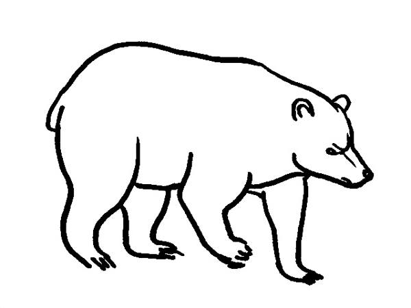 Bear coloring page 2