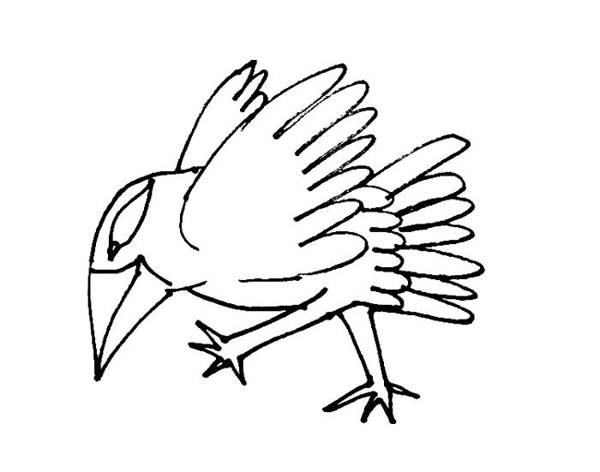 Cartoon walking bird coloring page