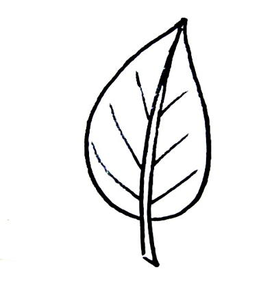 leaf templates - Simple Drawing For Kid