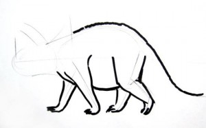 Triceratops body and legs drawing