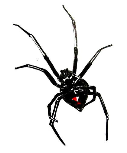 Black Widow picture