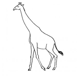 Walking Giraffe coloring page