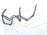 Phased Cross Spider drawing