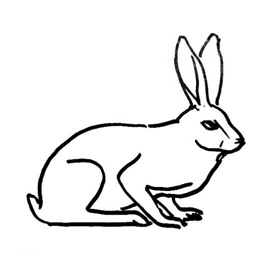 Resting Hare coloring page