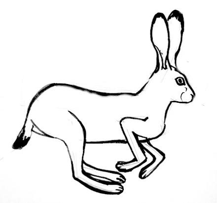 Jumping Hare picture