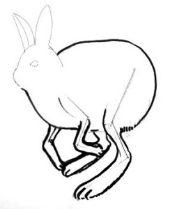 Bunny drawing lesson