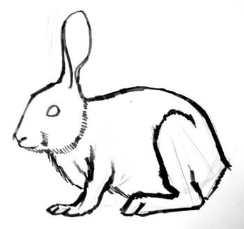 Rabbit drawing step by step