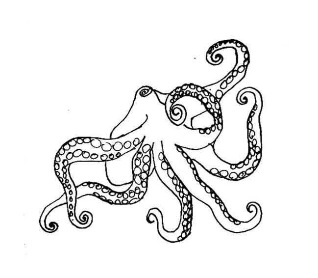 Octopus coloring page 49