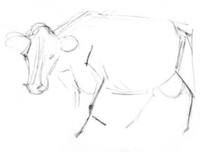 Walking Cow pencil outline