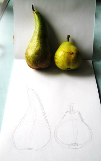 Drawing pears from nature.