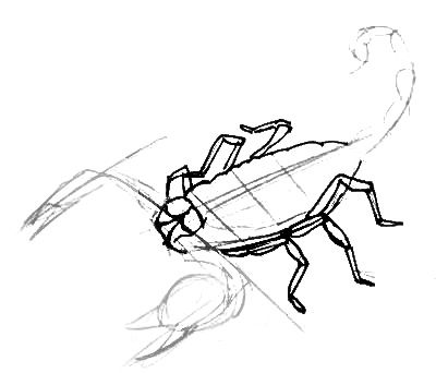 Scorpion  drawing lesson