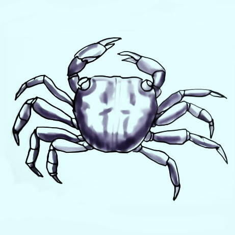 colored drawingCrab