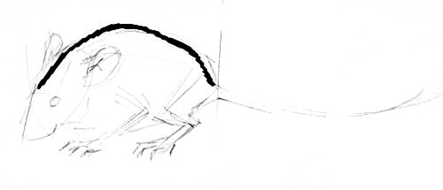 How todraw a Mouse