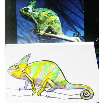 Chameleon drawing 13