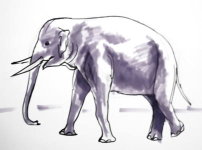 Indian elephant drawing-