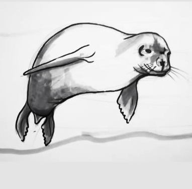 Seal drawing