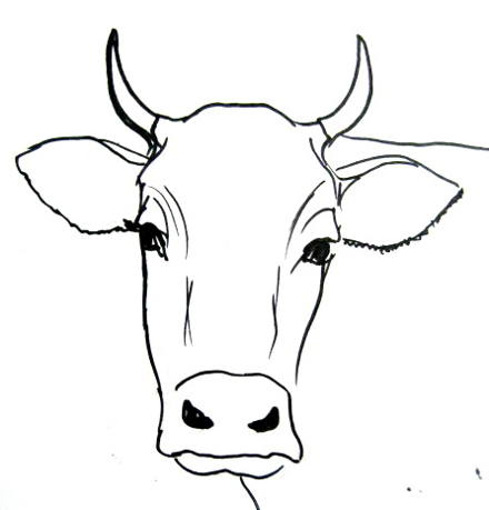 Bull face drawing