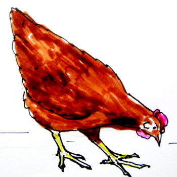 Colored hen drawing