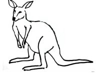 Kangaroo coloring page for kids