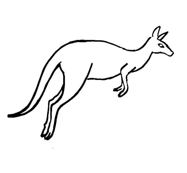 Kangaroo Coloring Sheet