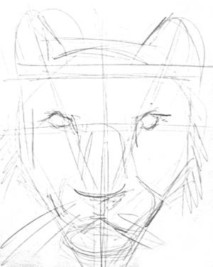 Pencil sketch of tiger face