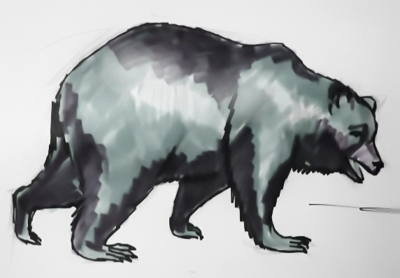 Walking Brown bear drawing