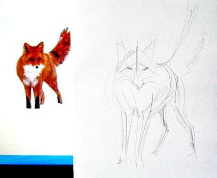 Fox drawing 13