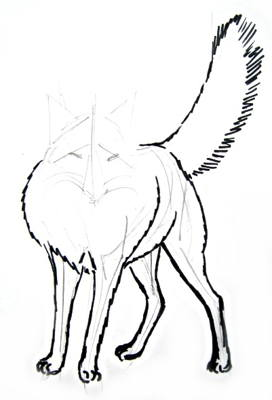 Fox legs drawing
