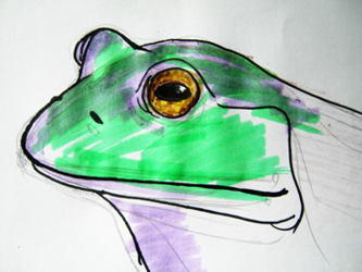 Frog head colored drawing