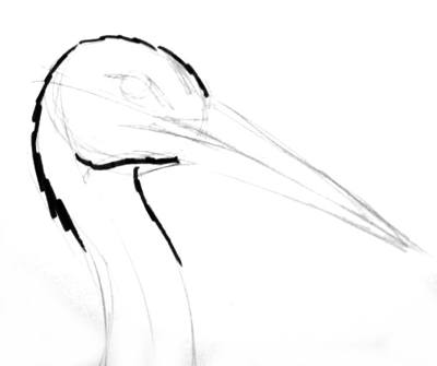 Stork head step by step