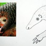 How to draw a Pangolin tutorial