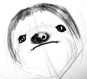 Sloth face drawing