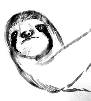 Sloth face drawing 13