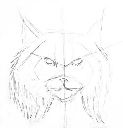 Lynx face outline
