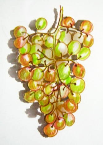 Grapes colored drawing