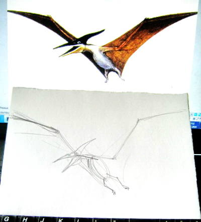 Pterodactyl drawing step by step
