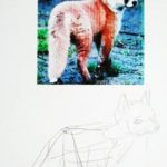 How to draw a Fox baby tutorial