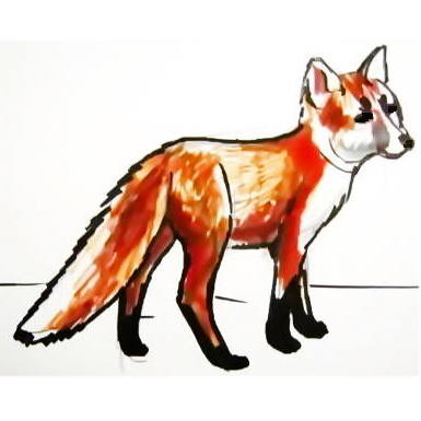 Baby fox colored drawing