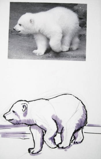 White bear cub drawing