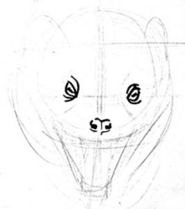 Mongoose head step by step drawing
