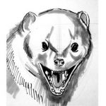 Mongoose face drawing