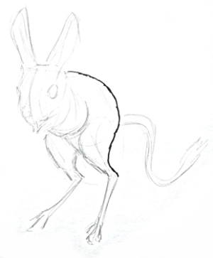 Jerboa step by step