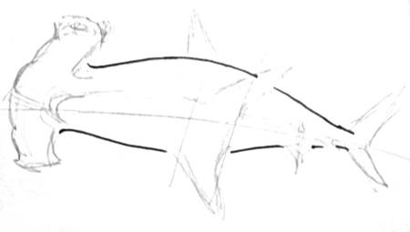 Hammerhead fish drawing