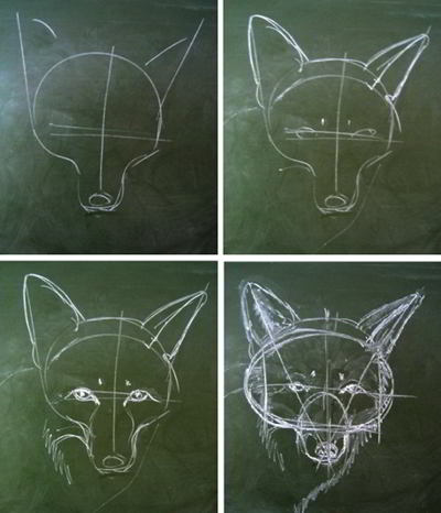 Fox head drawing step by step