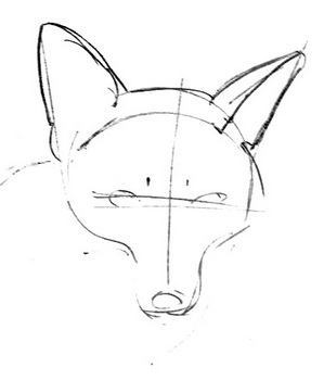 Fox head  and face rdawing tutorial