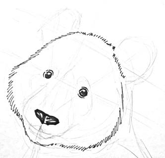 Panda  eyes and nose drawing